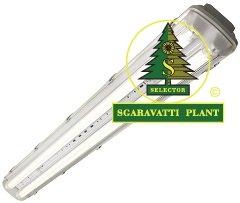 kes-led-sgaravatti-plant