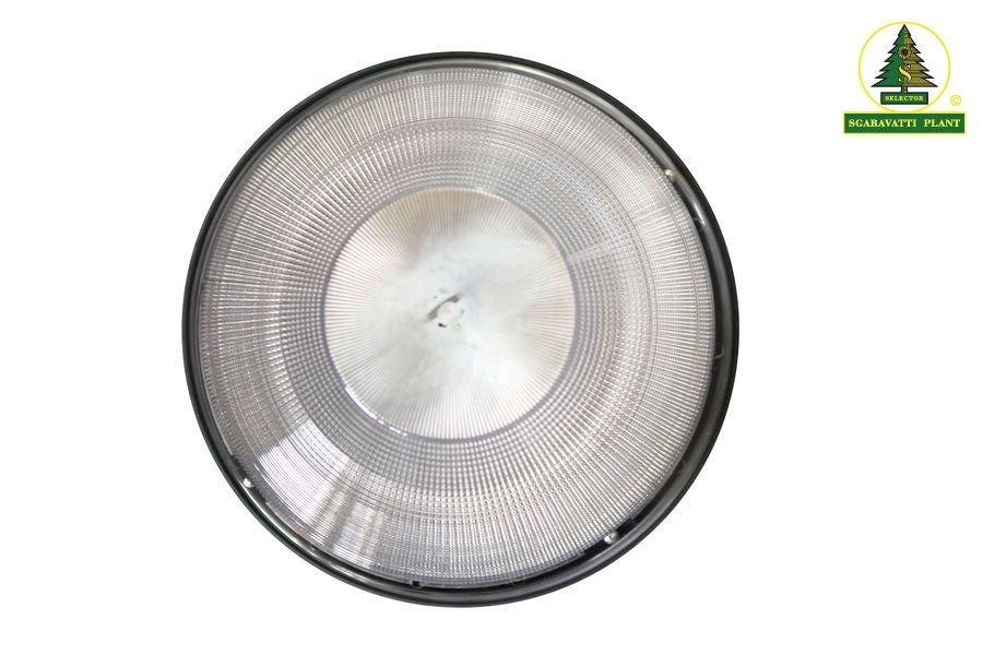 gong6