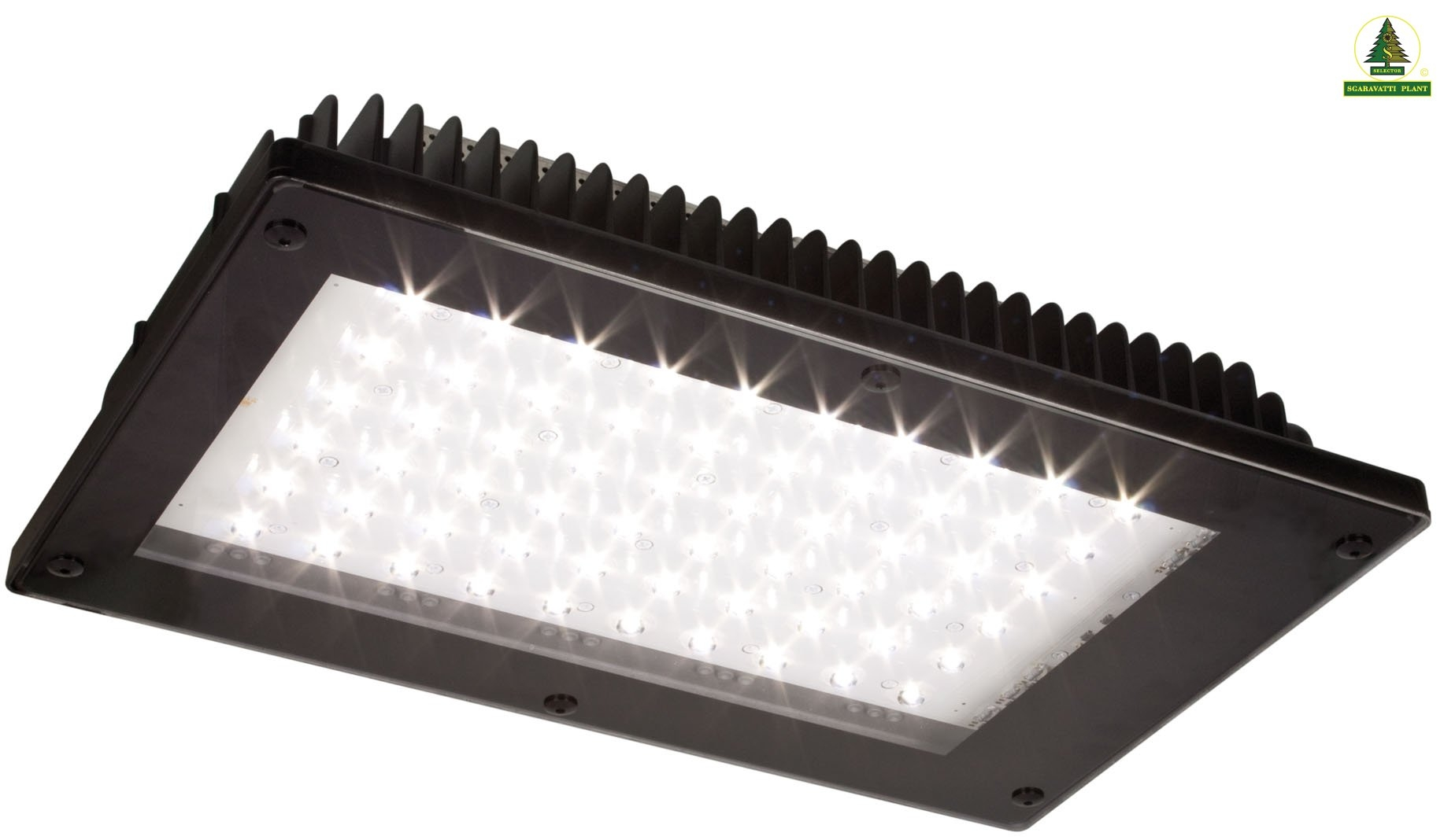 Luci a led per interni u lampada per in serra radiant with for Segnapasso led per scale interne