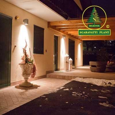 Luci a led per esterni illuminazione a led per giardini e perimetralesgaravatti plant - Luci per esterni a parete ...